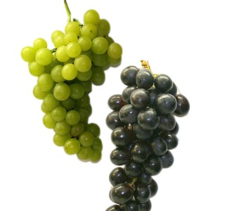 table-grapes-74346_1280